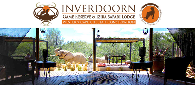 Inverdoorn Game Reserve Businesses In South Africa