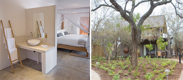 Umenbeza, hoedspruit accommodation, boutique lodge, limpopo, south africa, bush veld lodge, activities, deluxe rooms, honeymoon accommodation, game lodge